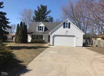 Sterling Heights Single Family Home For Sale: 37445 Dodge Park