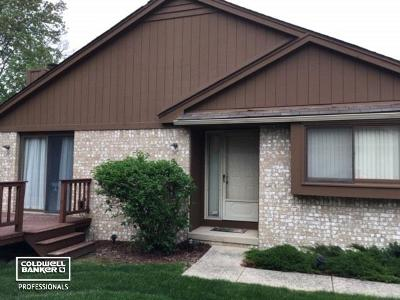 Clinton Township Condo/Townhouse For Sale: 16515 Dawn Dr