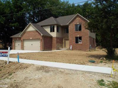 Clinton Township Single Family Home For Sale: 18025 Greenfield