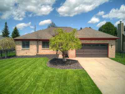 Macomb Single Family Home For Sale: 34297 W Hill Dr