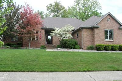 Macomb Single Family Home For Sale: 11097 Nature Way