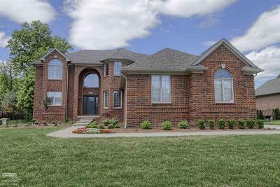 Shelby Twp Single Family Home For Sale: 56049 Crimson