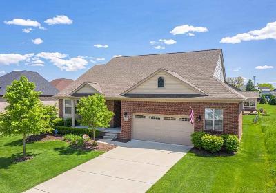 Washington Twp Single Family Home For Sale: 60034 Cherry Hill Drive