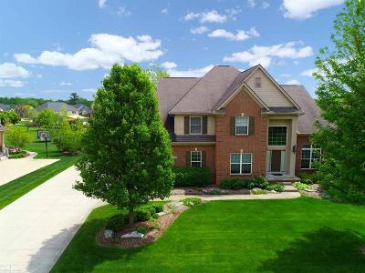 Lake Orion Single Family Home For Sale: 3977 High Grove Way