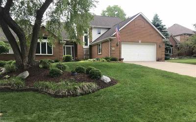 Shelby Twp Single Family Home For Sale: 56941 Manor Ct.