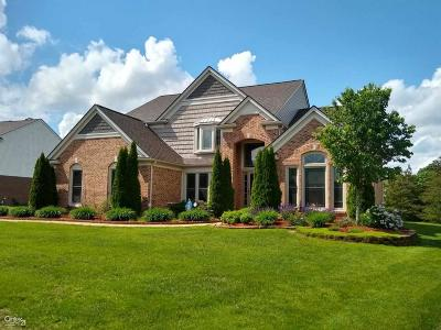 Canton Single Family Home For Sale: 47952 Picadilly