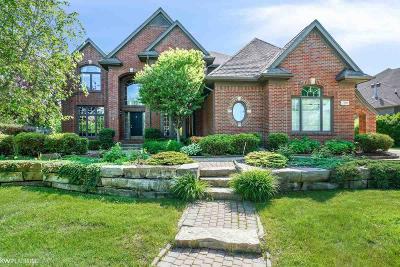 Shelby Twp Single Family Home For Sale: 7266 Vista