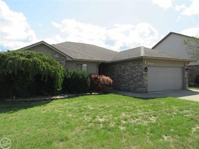 Sterling Heights Single Family Home For Sale: 34540 Burstyn