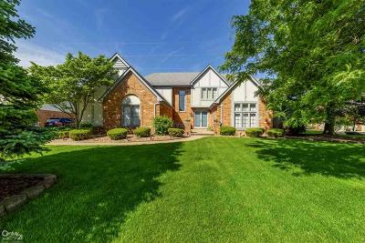 Shelby Twp Single Family Home For Sale: 48297 Lake Valley Dr