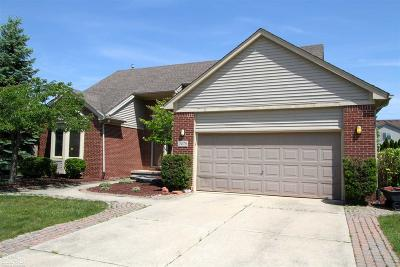 Macomb MI Single Family Home For Sale: $319,900