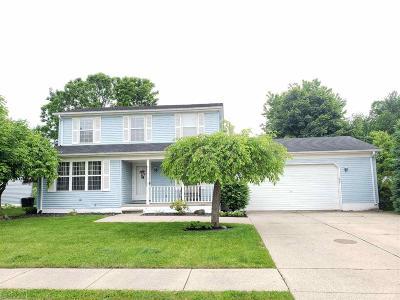 Armada, Armada Twp Single Family Home For Sale: 23744 Colonial
