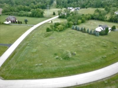 Lapeer Residential Lots & Land For Sale: Parcel 7 Whitney Erin Ct