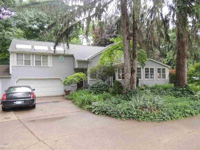 Macomb Single Family Home For Sale: 38150 Woodcrest