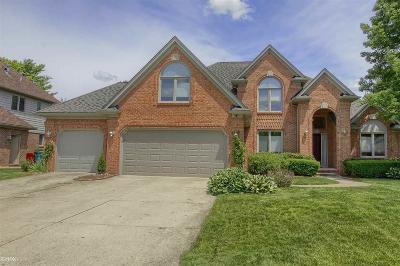 Harrison Twp Single Family Home For Sale: 28027 Lansdowne Drive