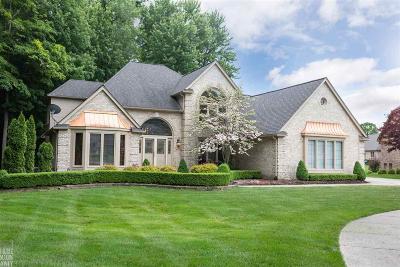 Macomb Single Family Home For Sale: 9062 Oakridge Trl