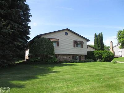 Lapeer Single Family Home For Sale: 554 McIntosh