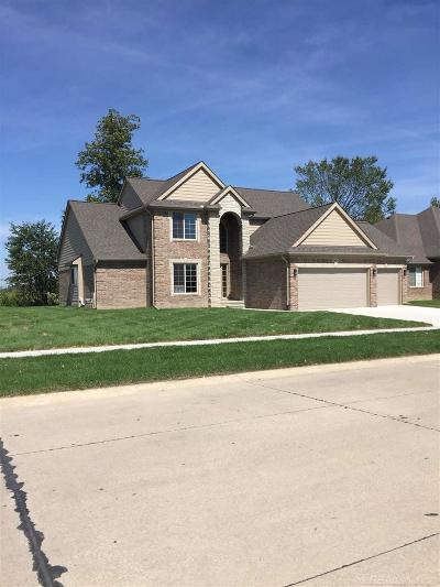 Macomb Single Family Home For Sale: 19601 Madrone