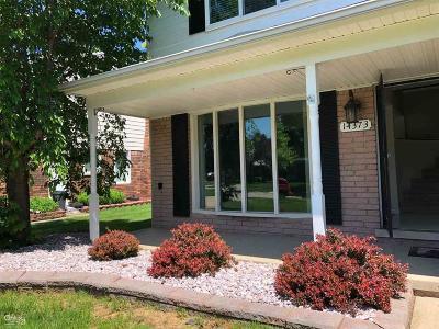 Sterling Heights Single Family Home For Sale: 14373 Kerner Dr