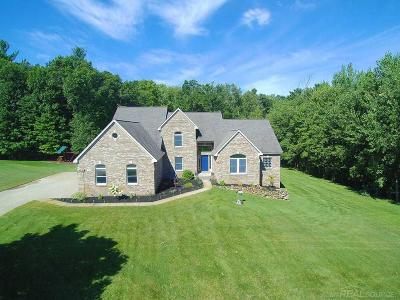Lake Orion Single Family Home For Sale: 860 Pinery