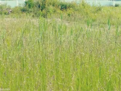 St. Clair Residential Lots & Land For Sale: Lot 100 Castlewood Dr