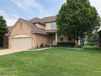 Macomb Single Family Home For Sale: 49802 Cranberry Creek
