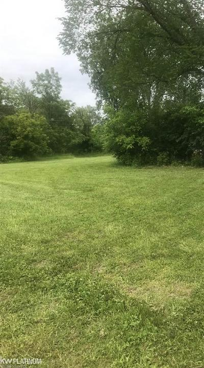 Clinton Township Residential Lots & Land For Sale: 24075 Oakley Street