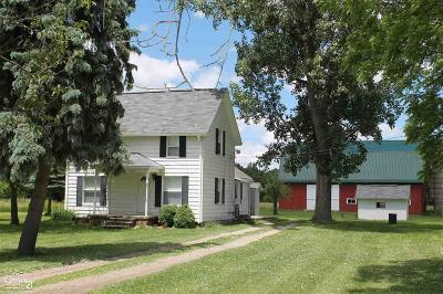 Ray Twp Single Family Home For Sale: 20289 31 Mile