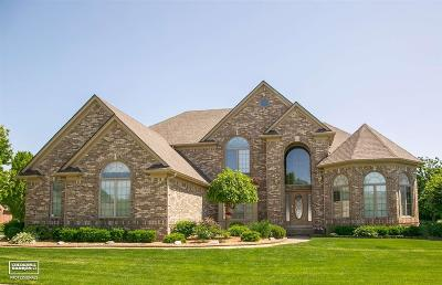 Macomb Single Family Home For Sale: 14332 Larkspur Dr