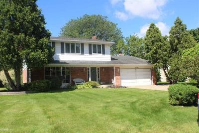 Macomb Single Family Home For Sale: 39745 Aynesley