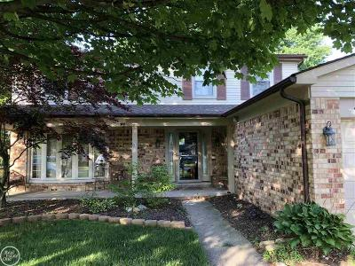 Macomb Twp Single Family Home For Sale: 47602 Tilch