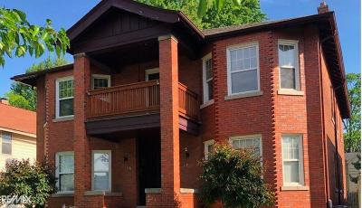 Mount Clemens Multi Family Home For Sale: 20 Lincoln St.