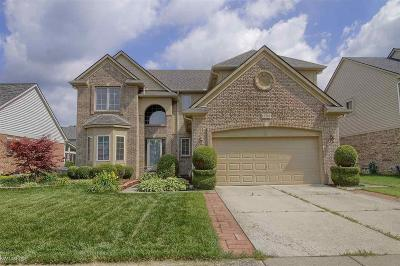 Clinton Township Single Family Home For Sale: 17283 Suffield
