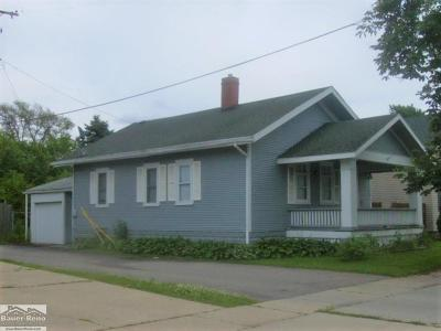 Port Huron Single Family Home For Sale: 1418 8th