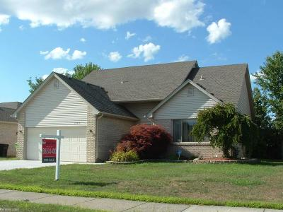 Chesterfield Twp Single Family Home For Sale: 25615 Regal