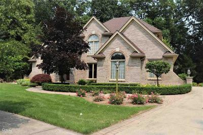 Shelby Twp Single Family Home For Sale: 9026 Maple Run Ct
