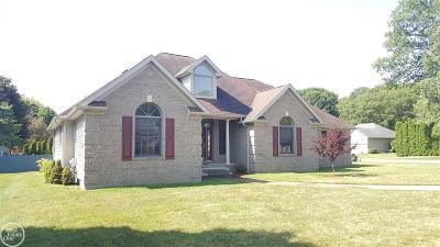 Fort Gratiot Single Family Home For Sale: 3787 Cedar Ridge