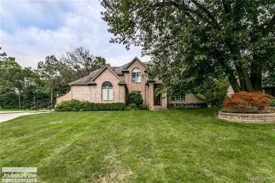 Fort Gratiot Single Family Home For Sale: 2625 Whitney