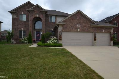 Macomb MI Single Family Home For Sale: $362,900