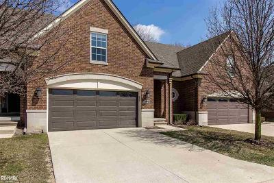 Clinton Township Condo/Townhouse For Sale: 21141 Daisy Street