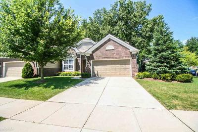 Macomb Condo/Townhouse For Sale: 49671 Broadacre Dr