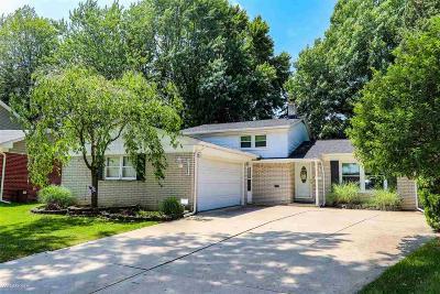 Saint Clair Shores Single Family Home For Sale: 31025 Couchez Ct