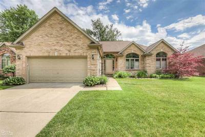 Clinton Township Single Family Home For Sale: 16100 Vista Woods Court