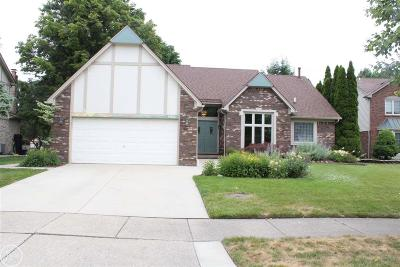 Clinton Township MI Single Family Home For Sale: $294,900