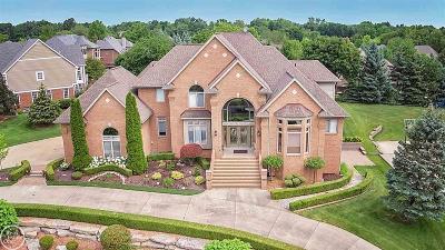 Washington Twp Single Family Home For Sale: 4879 Crystal Creek