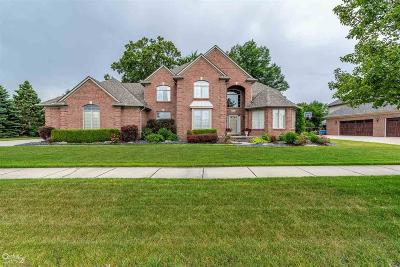Clinton Township Single Family Home For Sale: 43137 Rivergate
