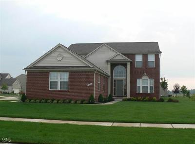 Macomb Single Family Home For Sale: 56504 Scotland
