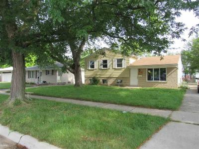 Macomb Single Family Home For Sale: 11065 Wilson