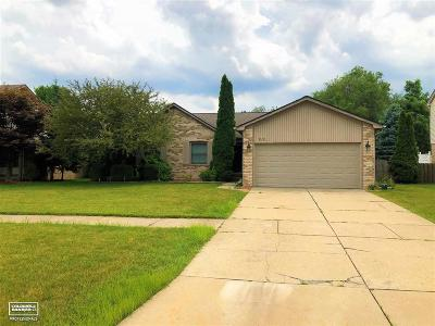 Macomb Twp Single Family Home For Sale: 17970 White Plains