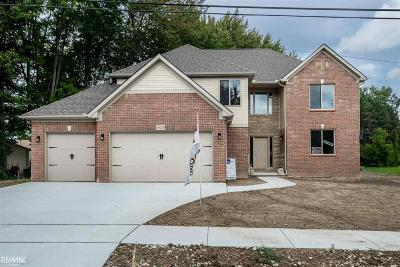 Clinton Township Single Family Home For Sale: 18025 Greenfield St.
