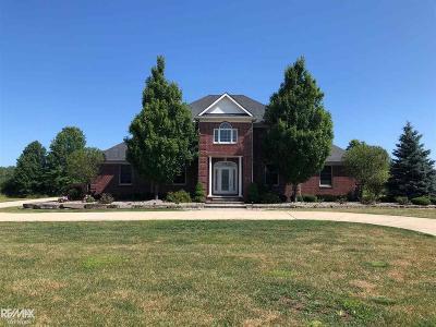 Single Family Home For Sale: 7856 Shea